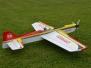 Fesselflug 2012